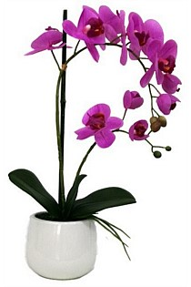 Artificial Pink Orchid in pot