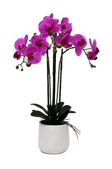 Artificial 3 Spray Pink Orchid in Pot